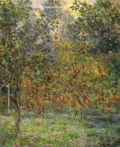 Claude Monet Under the Lemon Trees, 1884 painting free shipping, painting