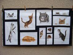 Curious Kitties  Robert Kaufman Fabrics  Cats by Bonbonsandmore