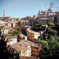 Rooftops and laundry in Siena. If you look close enough, you can see my underwear hanging