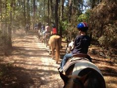 Explore Fort Wilderness from Horse-back with a Trail Ride from PassPorter.com
