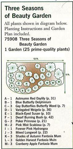 The Urban Domestic Diva: GARDENING: Garden plan a week, Week 2, Three Seasons of Beauty