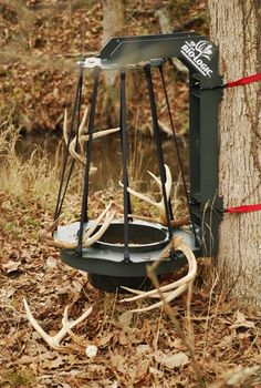 "The ""Rack Trap"" ... I've seen a few with different types of wiring to catch the antlers. These look like elastic bands which (I'd like to think) that if the antlers weren't ready to drop the buck wouldn't get tangled.  What do you all think?"