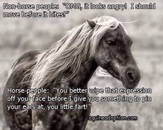 My mare exactly. Lol!                                                                                                                                                      More