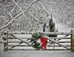 Love the wreath on the pasture gate