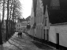 "See 8991 photos and 218 tips from 146716 visitors to Brugge. ""Picturesque canals, medieval city gates, romantic alleys, horse-drawn carriages, the. Horse Drawn, Medieval, Horses, City, Horse, Cities"