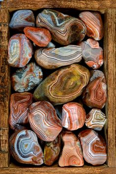 [traditional birth stone] The MN State gem: Beautiful Lake Superior Agates - found on both north (MN) and south (WI) shores of Lake Superior. - Agates are semi precious stones so common on Lake Superior beaches no one pays much attention. Cool Rocks, Beautiful Rocks, Minerals And Gemstones, Rocks And Minerals, Lake Superior Agates, Mineral Stone, Rocks And Gems, Healing Stones, Healing Crystals