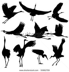 Find Vector Illustration Crane Silhouettes stock images in HD and millions of other royalty-free stock photos, illustrations and vectors in the Shutterstock collection. Silhouette Painting, Bird Silhouette, Tattoo Crane, Crane Drawing, Hirsch Silhouette, Crane Bird, Illustrator, Bird Drawings, Watercolor Bird