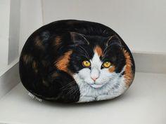 calicot cat galets-peints.fr