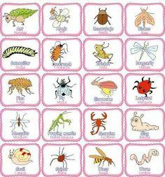 Fiesta Mickey Mouse, Learn English, Homeschooling, Learning, Wood, Animales, Learning English, Teaching, Homeschool