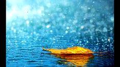 rain! #waterelement #waterbearer