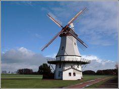 Die Behlmer Mühle in der Samtgemeinde Bruchhausen-Vilsen steht seit 1993 dem…