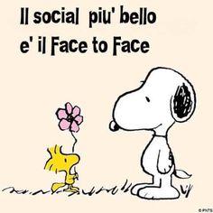 Ehehe Siii caro Snoopy ....... Io li uso entrambi , ma la pole position è il Face to Face!