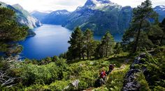 flowers fjords Norway | Best Rated Places: #1 Norway: Fjords region