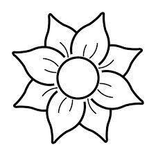 plantas ornamentales  Buscar con Google  ciencia  Pinterest