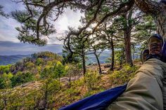 "From arkansas.wanderlust on Instagram ""Hammock camping on Sam's Throne this weekend Ozark National Forest Arkansas || #arkansas #arkansas_wanderlust #wanderfar #explore #nature_wizards_vip #wonderfularkansas #ig_divineshots #igs_america #ig_brilliant #just_unitedstates #ig_unitedstates #everything_imaginable #show_us_nature  #great_captures_nature #nature #landscapephotography #landscape #sonya7r #sonyimages #bella_shots"""