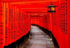Fushimi Inari, Kyoto, Japan. Visited today - incredible.