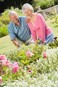 #Gardening -- check out this article to see why gardening is really great for older adults! How is your intergenerational center incorporating gardening into the next season of activities?