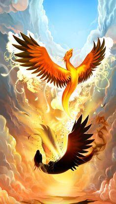 New Phoenix Bird Mythology Art Mythical Creatures Ideas Phoenix Bird Tattoos, Phoenix Tattoo Design, Crow Tattoos, Ear Tattoos, Phoenix Art, Phoenix Rising, Phoenix Quotes, Phoenix Dragon, Rise Of The Phoenix