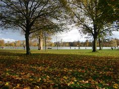 """Alexander L. Popof captured this photo of a beautiful autumn day in Hyde Park. """"I just needed a break from work in L., so I flew to London for five days,"""" he said. Visit Uk, London Pictures, Picture Postcards, European Vacation, London Calling, Hyde Park, London Travel, London City, Summer Travel"""