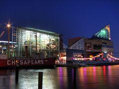Aqua.org/explore/baltimore    World's Best Aquarims!    national aquarium in baltimore | National Aquarium In Baltimore, Night