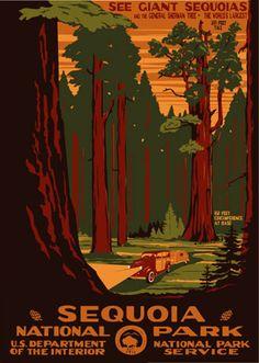Sequoia (Kings Canyon) National Park - US Travel Bureau Poster - WPA Posters / Prints - Ranger Doug's Enterprises