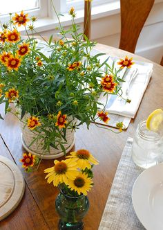 Summer Party Ideas: Sunsplash Coreopsis makes a bright and cheery centerpiece for a summer tablescape.
