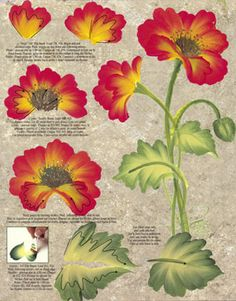 One Stroke Poppies Teaching Guide Packet by Folk Art