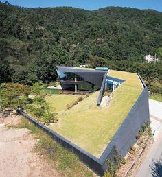 casa telhado verde