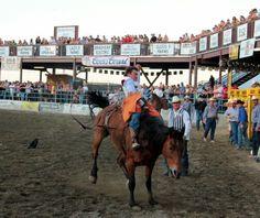 Hang On! Horse Heaven Round-Up Benton-Franklin County Fair & Rodeo #BFFair @BFFAIR