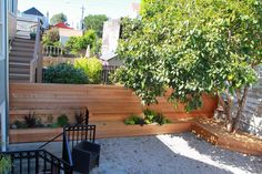 Pictures of what the backyard design is now (when first done).