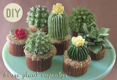 Cupcakes by Alana Jones-Mann, look like cacti!  http://www.treehugger.com/easy-vegetarian-recipes/delectable-houseplant-cupcakes-alana-jones-mann.html