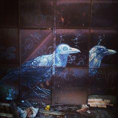 by ferdinandfeys: #ROA #birds - #graffiti #streetart #Gent #Belgium #visitgent #urbex