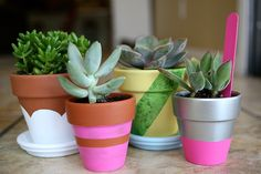 eighteen25: painted pots.  Teacher gift idea