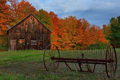 Autumn Harvest | Flickr - Photo Sharing!