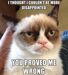 31. Disappointed - The 50 Funniest Grumpy Cat Memes   Complex