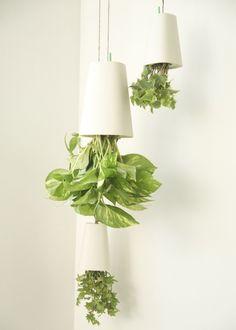 Boskke hanging planters