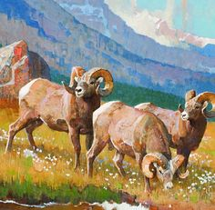 Jackson Hole Art Auction: Rocky Mountain High (bighorn sheep)