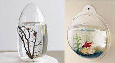 Fish Tank #DIY love the mounted wall tank