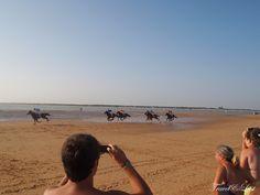 Beach Horse Racing 2014 in Sanlucar de Barrameda #horserace #sanlucar #andalusia #spain #beach #2014