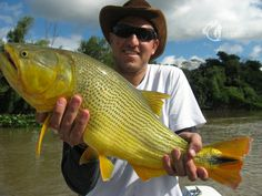 en el sudoeste de la provincia, Goya está emplazada sobre la margen izquierda del río Paraná, bañada por lagunas y esteros que dan vida a una naturaleza exhuberante.   la pesca deportiva es una de las actividades más practicadas por los pescadores locales, quienes hace años dieron vida a una fiesta única en el mundo en honor a uno de los peces más hermosos del río Paraná: el Surubí.