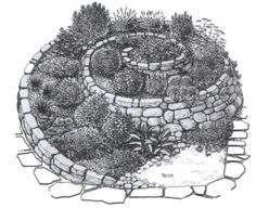 spiral shaped raised beds in permaculture