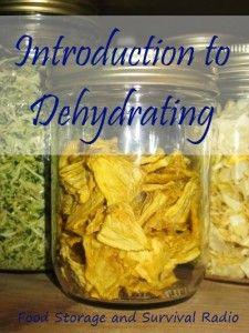Introduction to Dehydrating--Food Storage and Survival Radio