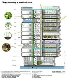 cities be self-sufficient? An argument for vertical urban farms mckinsey-despommier-urban-vertical-farm-diagrammckinsey-despommier-urban-vertical-farm-diagram Green Architecture, Architecture Drawings, Futuristic Architecture, Sustainable Architecture, Permaculture, Hydroponic Farming, Urban Agriculture, Urban Farming, Building Images