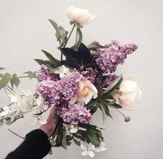fjura All Flowers, Beautiful Flowers, Wedding Flowers, Gift Bouquet, Hand Bouquet, Flower Stands, Flower Market, Floral Bouquets, Flower Designs