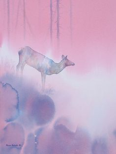 wildlife art Original Watercolor Wildlife Art - Original Wildlife & Conservation Art by Alison Nicholls