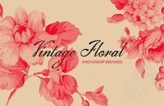 Medialoot - Vintage Floral Photoshop Brush Set