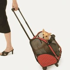 4in1 Wheeled Pet Carrier