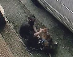 A man was caught on video punching his dog repeatedly in the head before slamming her to the ground. The vicious attack occurred in broad daylight on a public street. Demand that the poor dog be rescued and her violent attacker brought to justice.