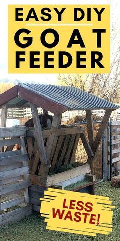 How To Make a DIY Hay Feeder For Goats! It's easy to spend a lot of money on hay for your goats. If you are raising goats then you are probably storing hay and then slowly feeding it to your goats throughout the year. And when you feed the goats it's best to keep the hay off the ground and covered. This DIY hay feeder for goats is a great option! #GoatFeederIdeas #GoatFeederPlans #HayRack Diy Hay Feeder, Goat Hay Feeder, Small Goat, Goat Shelter, Happy Goat, Nubian Goat, Goat Care, Nigerian Dwarf Goats, Raising Goats
