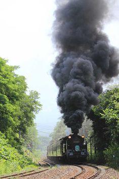 函館本線 SL函館大沼号 蒸気機関車C11207